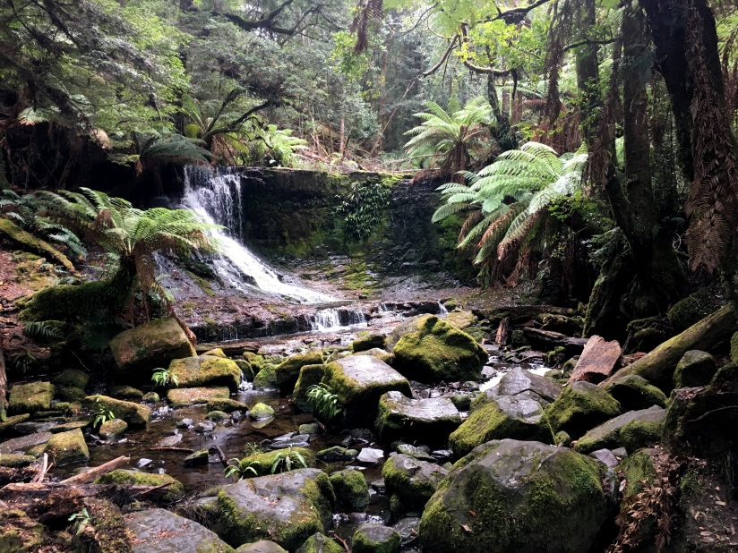 Mount Field National Park-Tasmania(3)